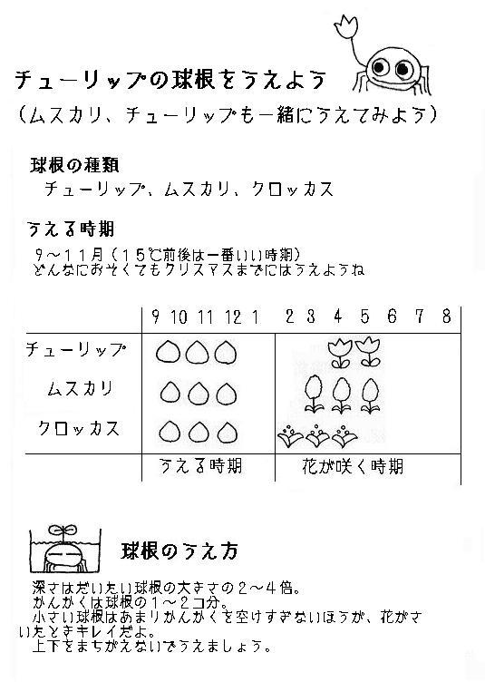 kyukon1.JPG